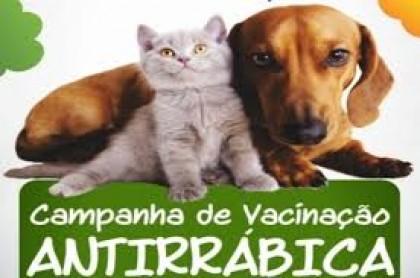"""Resultado de imagem para Dia """"D"""" da vacinação antirrábica é neste sábado (7)"""